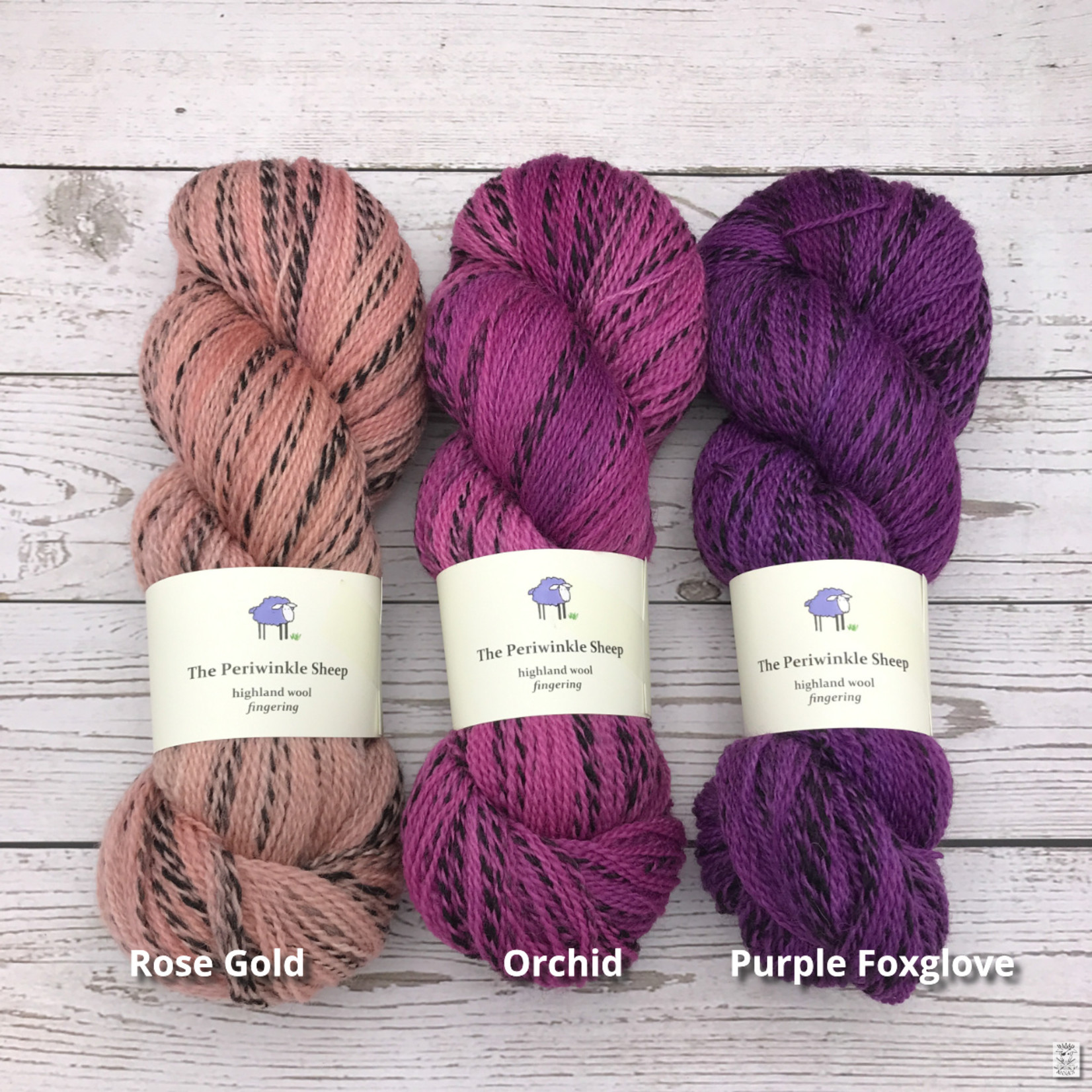 Periwinkle Sheep Periwinkle Sheep Highland Wool Fingering