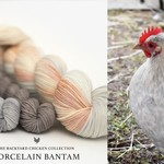 Hue Loco Backyard Chicken Phyllis Sock
