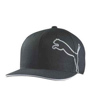 Puma Monoline Snapback Cap