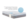 "Carbon Cool 14"" Mattress"