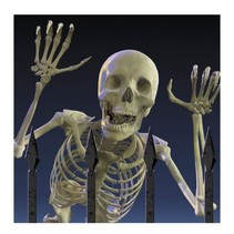 *Eerie Estate Skeleton Lunch Napkins 20ct