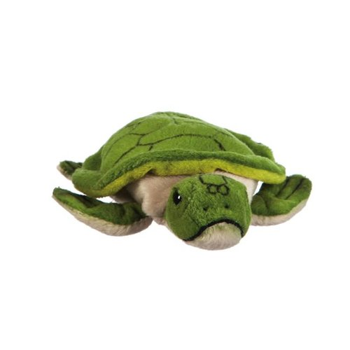 """Turtle 6.5"""" Plush"""