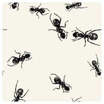 Picnic Ants Beverage Napkins