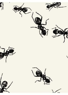 ***Picnic Ants Beverage Napkins