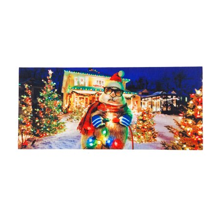 ***Sassafrass Christmas Lights Swtich Mat