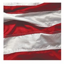 ***Patriotic Symbol 16ct Beverage Napkins