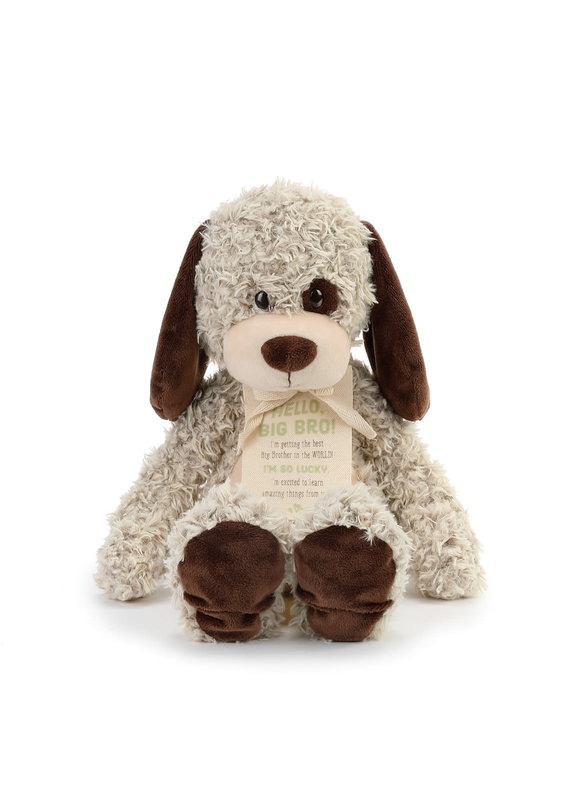 ***Gift from the New Kid: Big Brother Plush Puppy