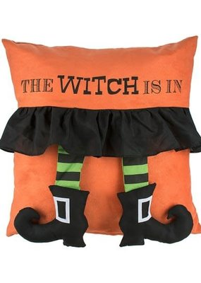 ***The Witch is In Pillow