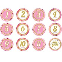 ***Pink Monthly Milestone Stickers 12ct
