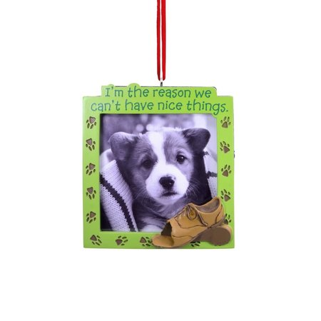 ***Can't Have Nice Things Puppy Photo Frame Hallmark Ornament