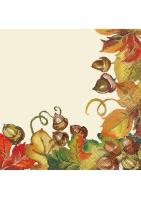 ***Harvest Pumpkins Beverage Napkins 16ct