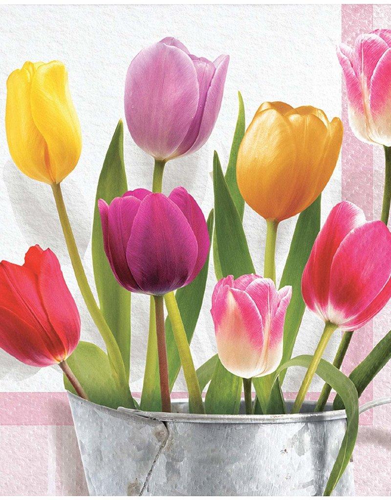 ***Springtime Tulip Beverage Napkins 16ct