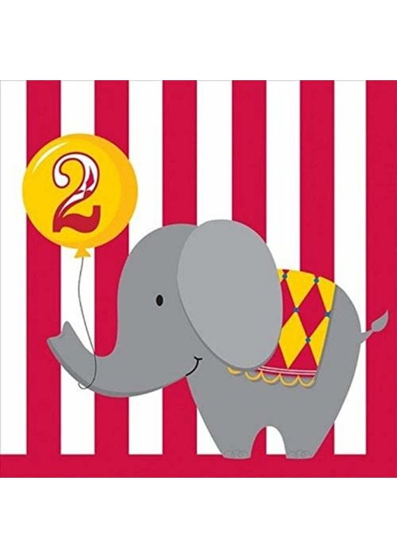 ***Happy 2nd Birthday Circus Time Lunch Napkins