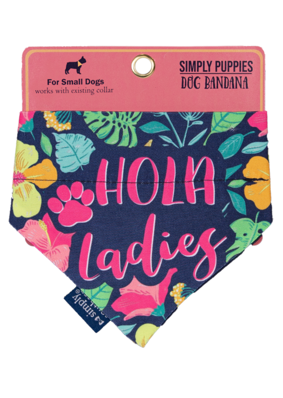 ***Simply Southern Dog Bandana Hola Ladies