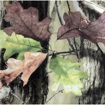 Mossy Oak Lunch Napkins