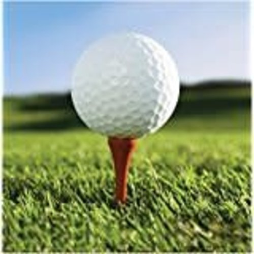 *Sports Fanatic Golf Lunch Napkins  18ct