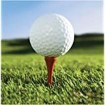*Sports Fanatic Golf Beverage Napkin 18ct