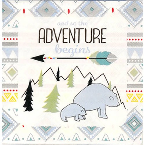 The Adventure Begins Boy Lunch Napkin