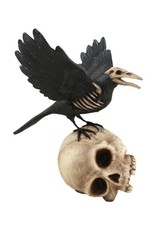 Bethany Lowe Raven on a Skull