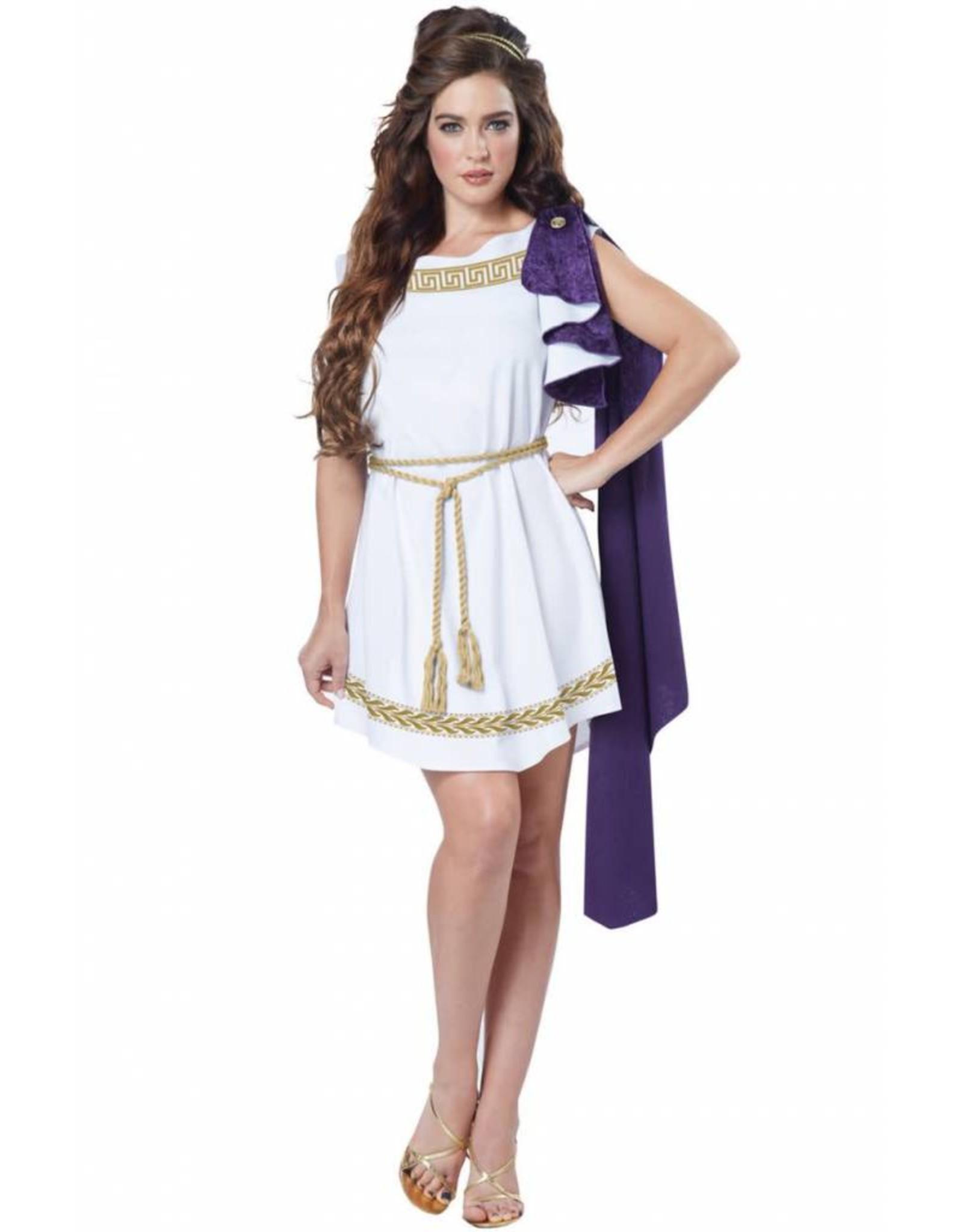 California Costume Grecian Toga Dress