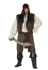 California Costume Rogue Pirate Plus