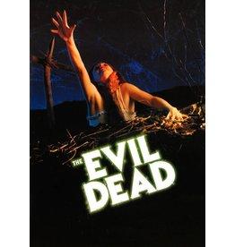 Posters Wholesale Poster - Evil Dead