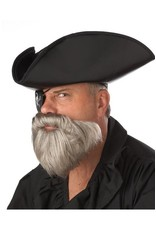 California Costume Capt. Beard & Stache Grey