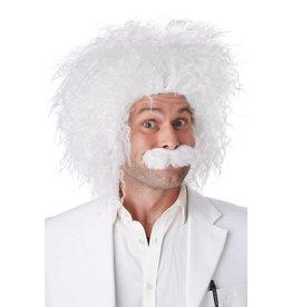 California Costume Einstein Wig
