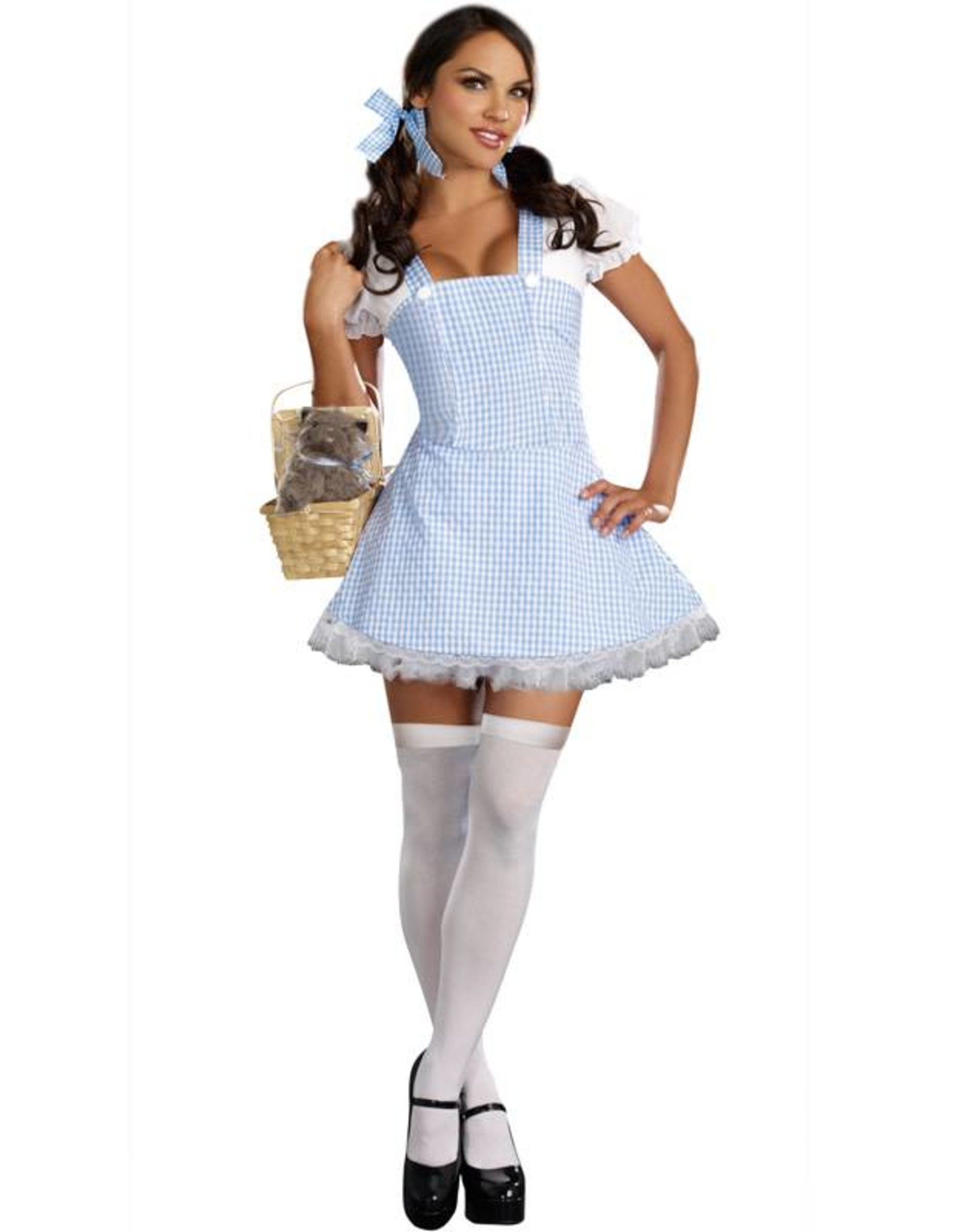 Dreamgirl Dorothy Gingham Dress