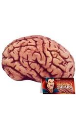 Loftus Bloody Brain