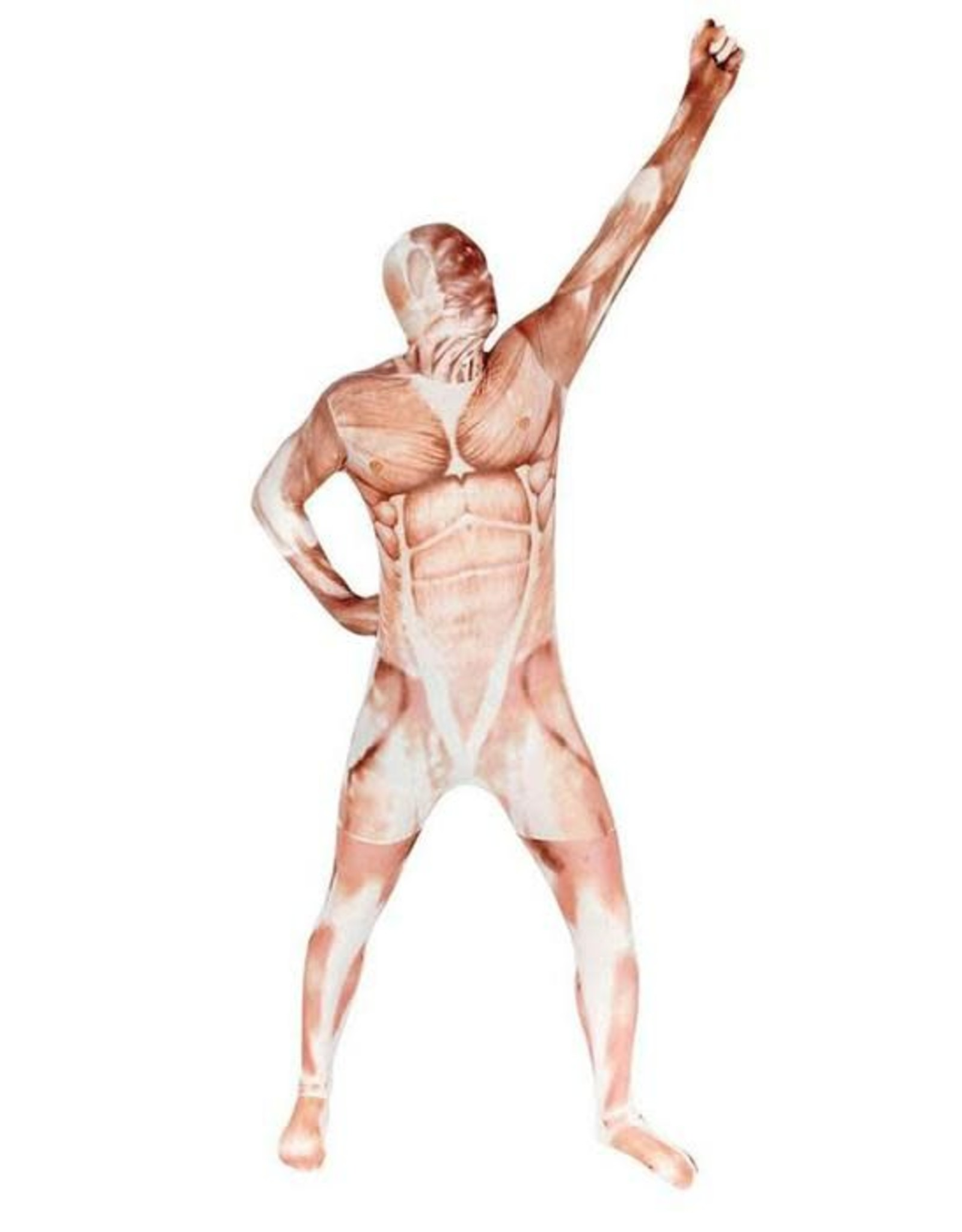 Morphsuits Morphsuit Muscle