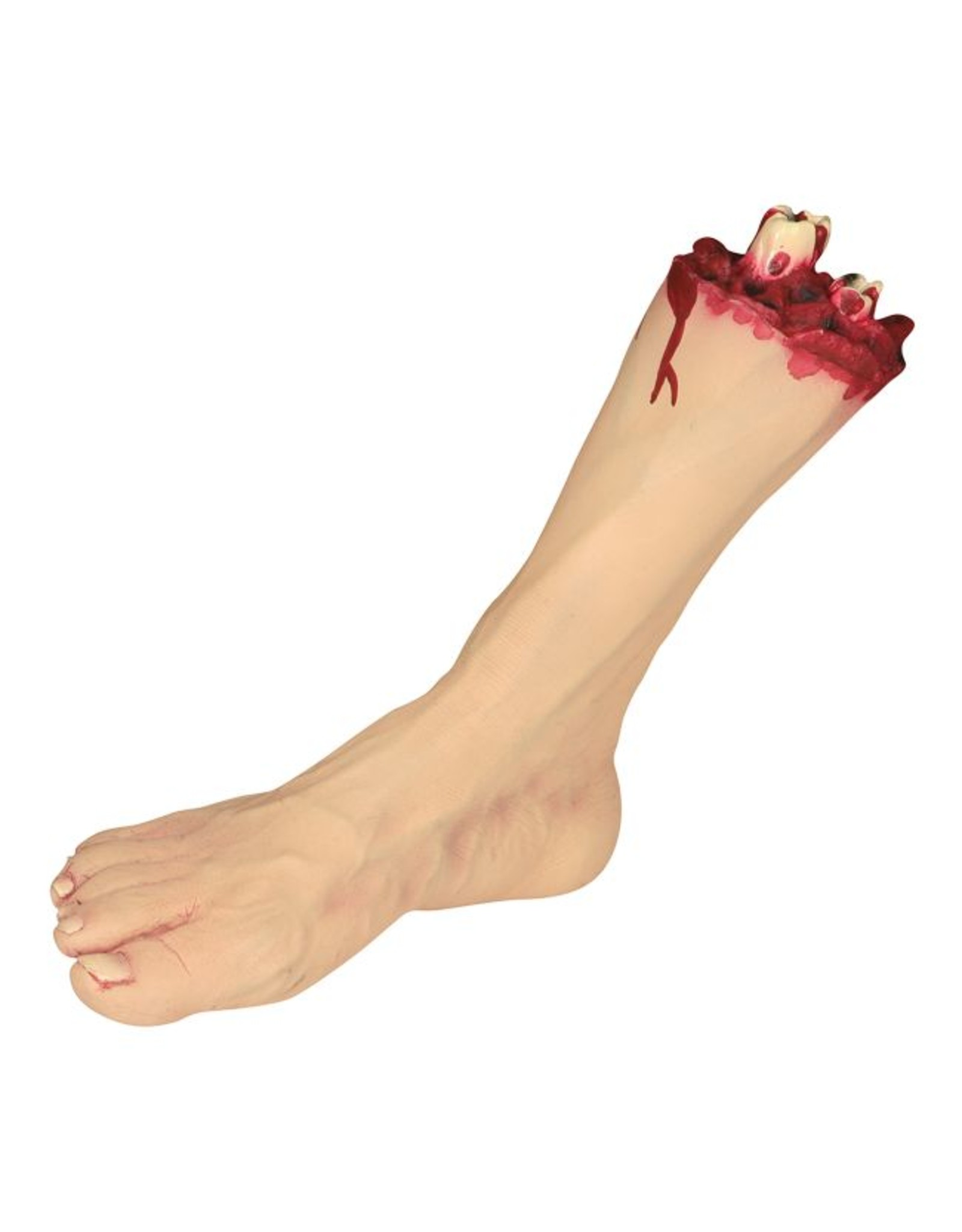 Seasons Severed Foot