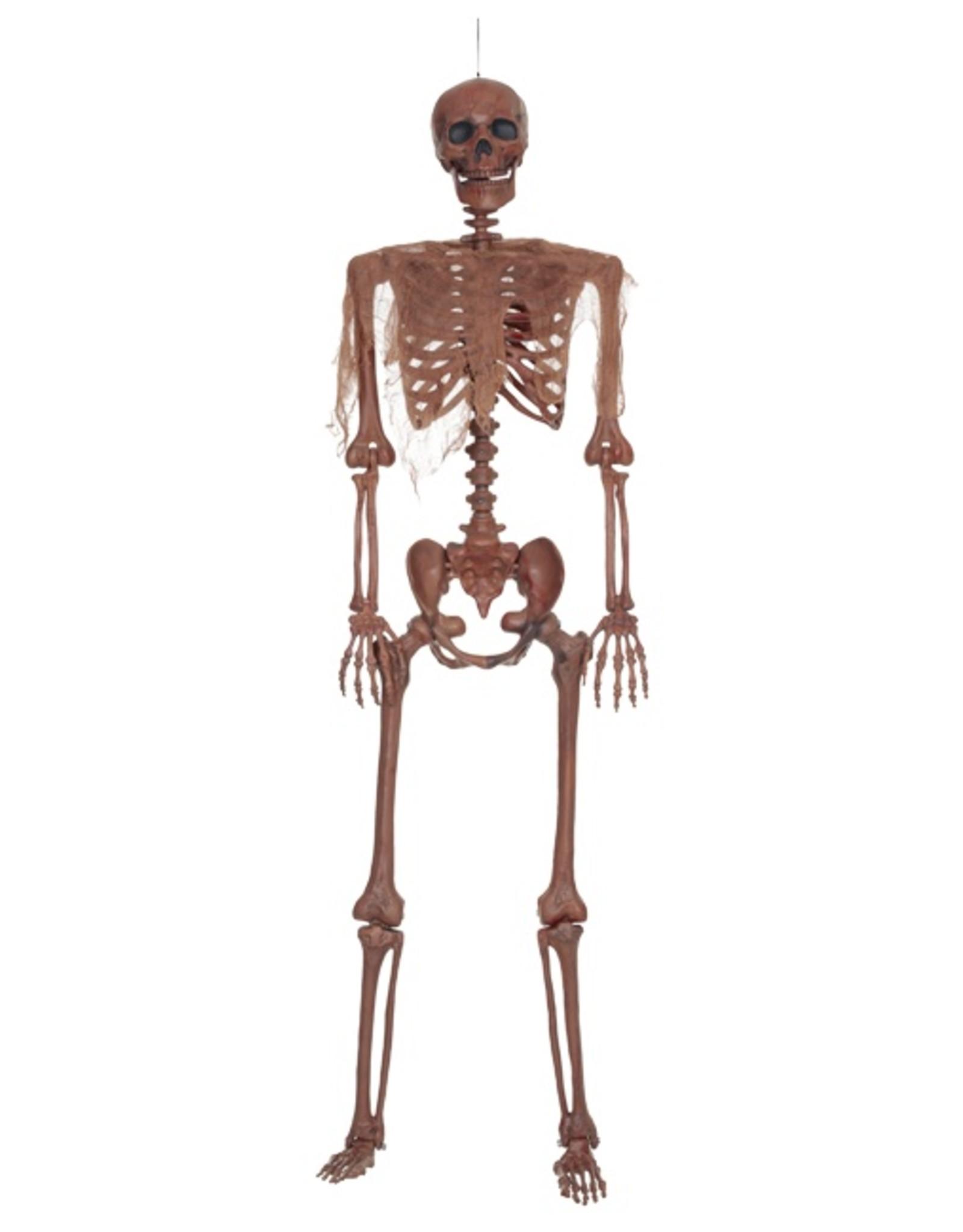 Seasons Decayed Posable Skeleton