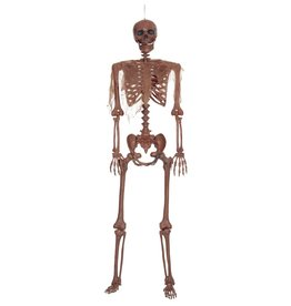 Seasons Decayed Posable Skeleton