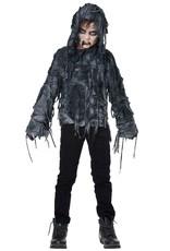California Costume Zombie Hoodie Child