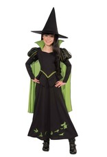Rubies Wicked Witch Child