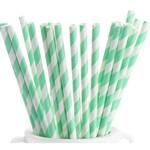 Paper Straws - Fresh Mint - 24pk