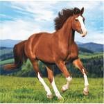 Beverage Napkins-Horse and Pony-16pk-2ply