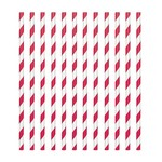 Paper Straws-Red and White Stripped-24pk