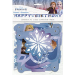 Banner-Frozen II