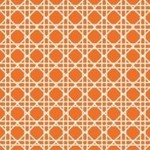 Napkins-BEV-Cane Sunkissed Orange-24pkg-3ply/Discountined/Final Sale