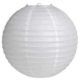"Lantern-Paper-White-1pkg-12"""