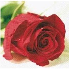 Napkins-BEV-Valentine Rose-20pkg-3ply- Discontinued/Final Sale