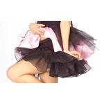 Costume Accessory-Black Crinoline-Adult Standard