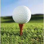 Napkins-LN-Golf Fanatic-16pkg-2ply
