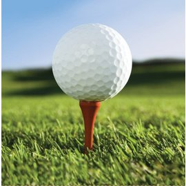 Napkins-LN-Golf Fanatic-16pkg-2ply