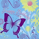 Butterfly/ Ladybug/ Flowers