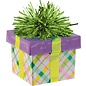 Balloon Weight-Gift Package -Plaid-6oz