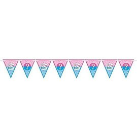 12 Pennant Banner - Baby Shower - Gender Reveal - 15'