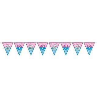 12 Pennant Banner - Baby Shower - Gender Reveal - 15'